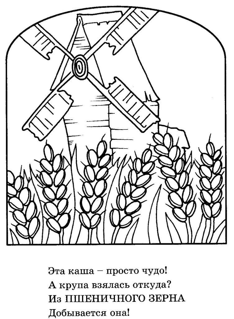 Раскраски пшеница